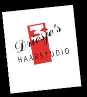 Driesjes Haarstudio logo