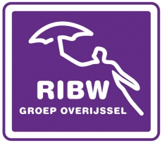 RIBW Groep Overijssel logo